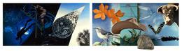 76.09 Tallahassee Murals